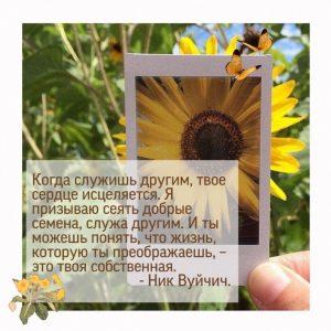 #ДЦВолонтер #ДЦВолонтерКстово #цитаты  ☀️ ЦИТАТЫ ОТ ВОЛОНТЁРОВ☀️
