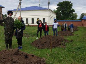 Сегодня Добровольческий Центр «Волонтер» участвовал в посадке
